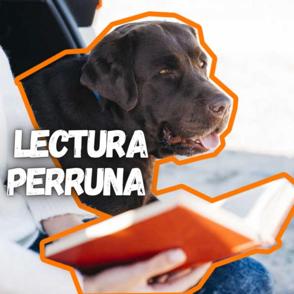 Chica leyendo libro sobre perros