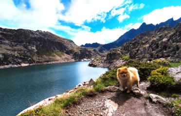 Lago del Juclar