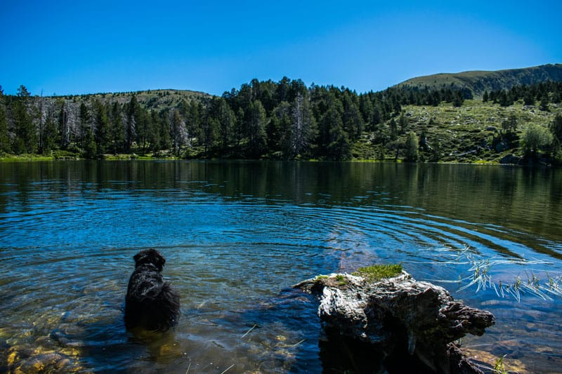 ESTANY DE LA NOU – Vall del Madriu Perfita i Claror