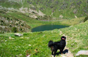 Siscaró, lago y refugio