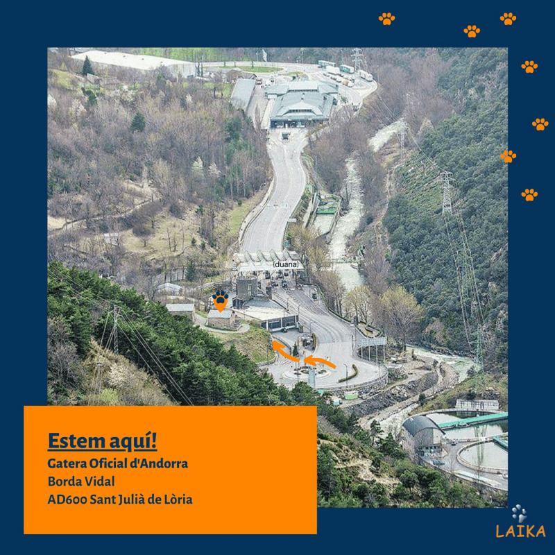 Gatera oficial de Andorra