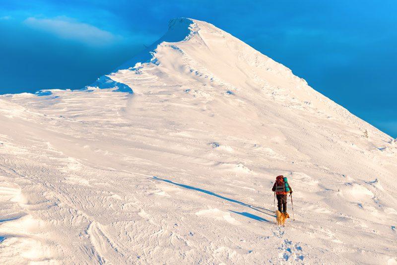 Chico haciendo esqui de montaña con perro